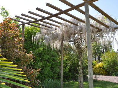 le_cottage_pergola_avril_2015